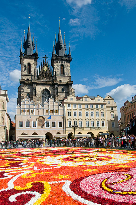 Цветочный ковер на Староместской площади в Праге