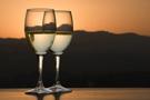 Евросоюз пытался предупредить перепроизводство вина