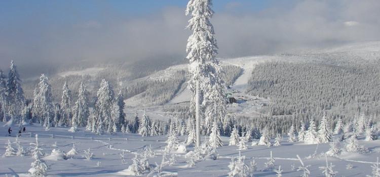 В чешских горах Есеники объявлен 3-й уровень опасности схода снежных лавин